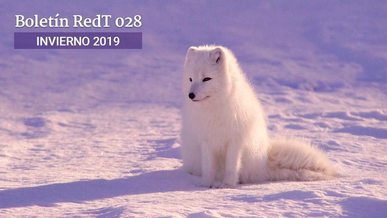 Boletín RedT Nº 28 - Invierno 2018-2019