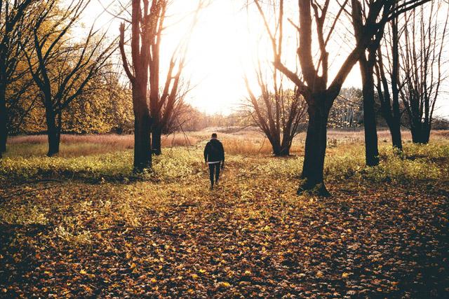 Visiones escatológicas: un modelo de reconciliación