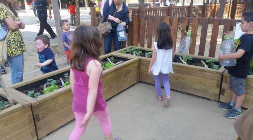 Juntándose los niños de Cardedeu para regar el jardín comunitario