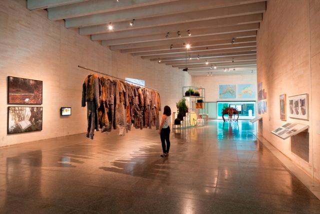 Arte y Transición: Vista de la exposición Hybris. Cortesía del MUSAC.