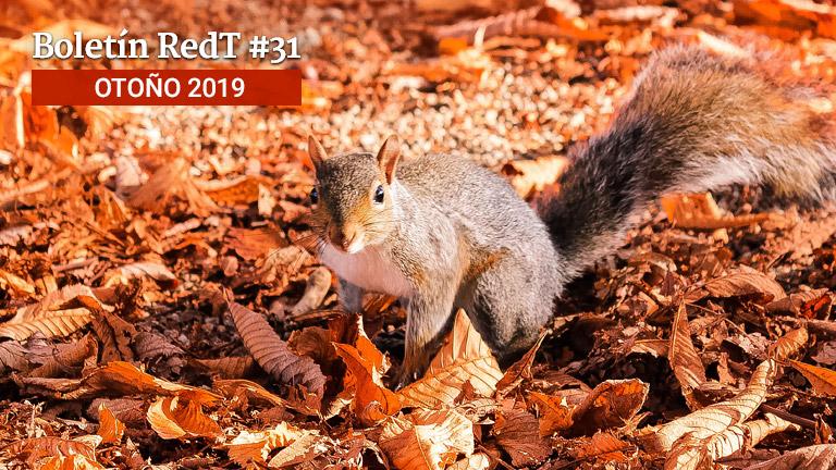 Boletín RedT Nº 31 - Otoño 2019