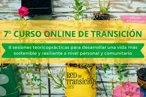 7º Curso de Transición Online